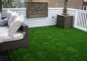 Balcony Grass, Backyard Grass, Patio Grass