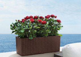 Outdoor Planter,JHA-TB03
