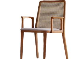 Picasso Arm Dining Chair, JD-288