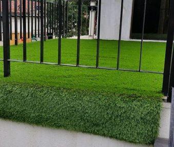 Decon Turf Grass