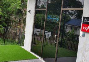 Terrace Grass