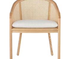 Picasso Dining Chair, JD-286
