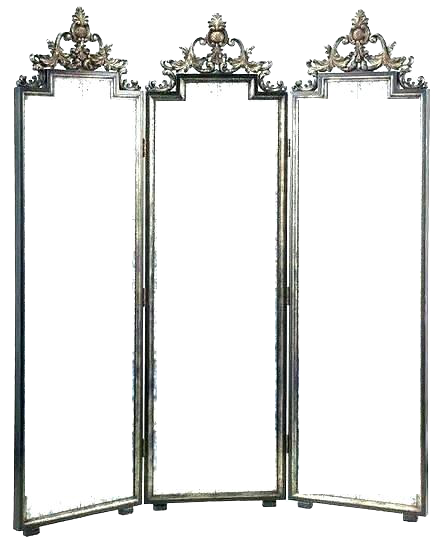 Mirror Cum Room Divider,